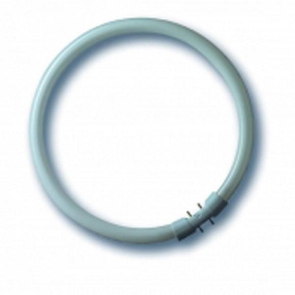 Radium Bonalux NL-T5 22W/840C/2GX13