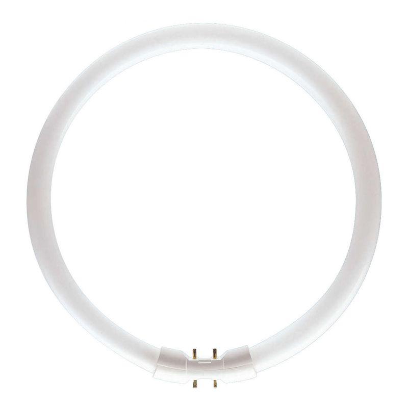 Master TL5 Circular