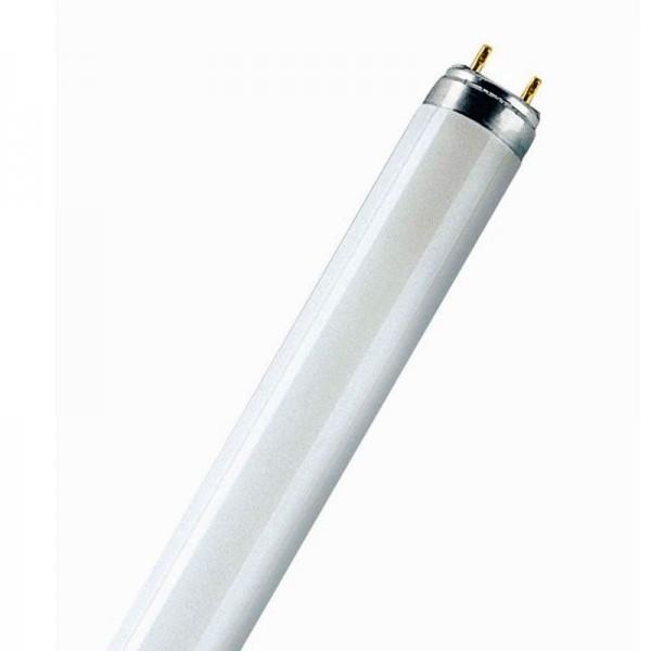 58W T8 Röhre Licht Osram Leuchtstoffröhre LUMILUX De Luxe 965 Tageslicht