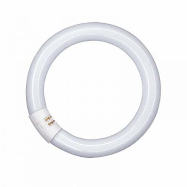 Osram L 22W/840 C Ringform Lumilux Cool White G10q